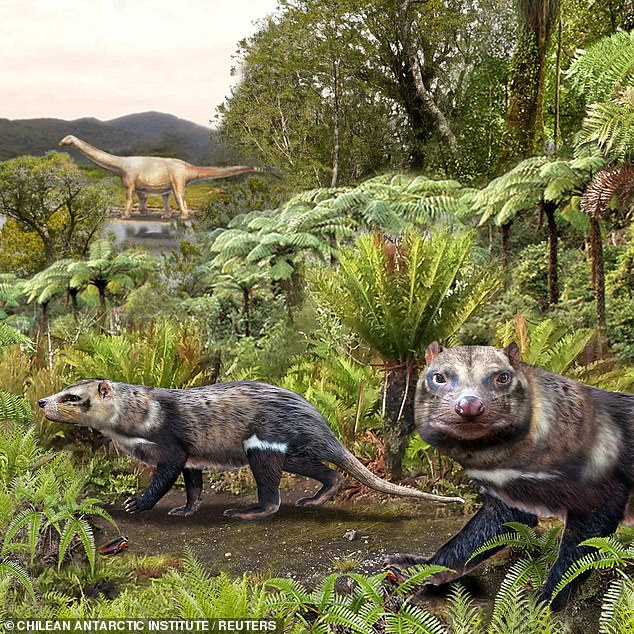 The Beast Of Five Teeth: Scientists Unearth Remains Of Herbivore Who Lived With Dinosaurs 74 Million Years Ago