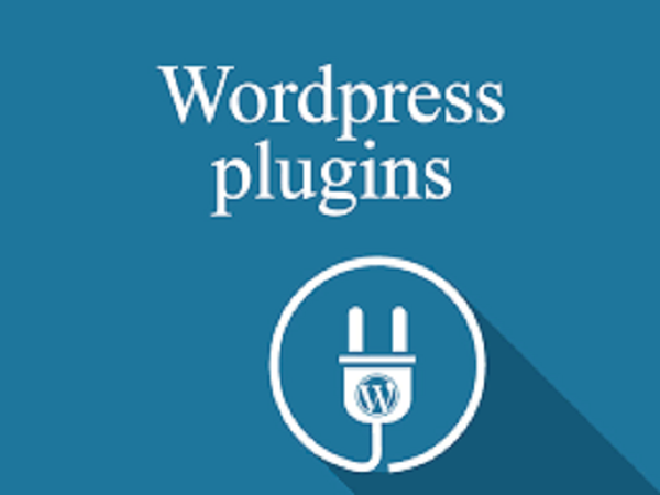 How to Solve – Can't Add New Plugin Issue in WordPress